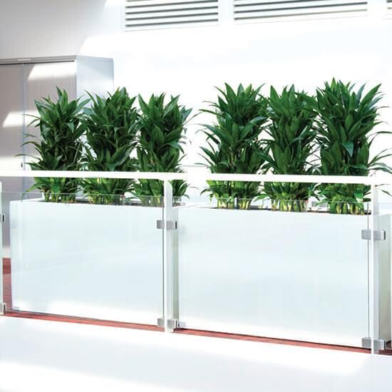 Rectangular Fiberglass Planter