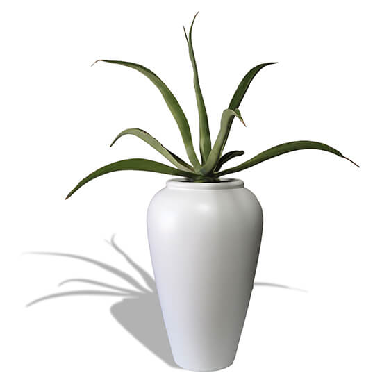 Tall white Vase like planter