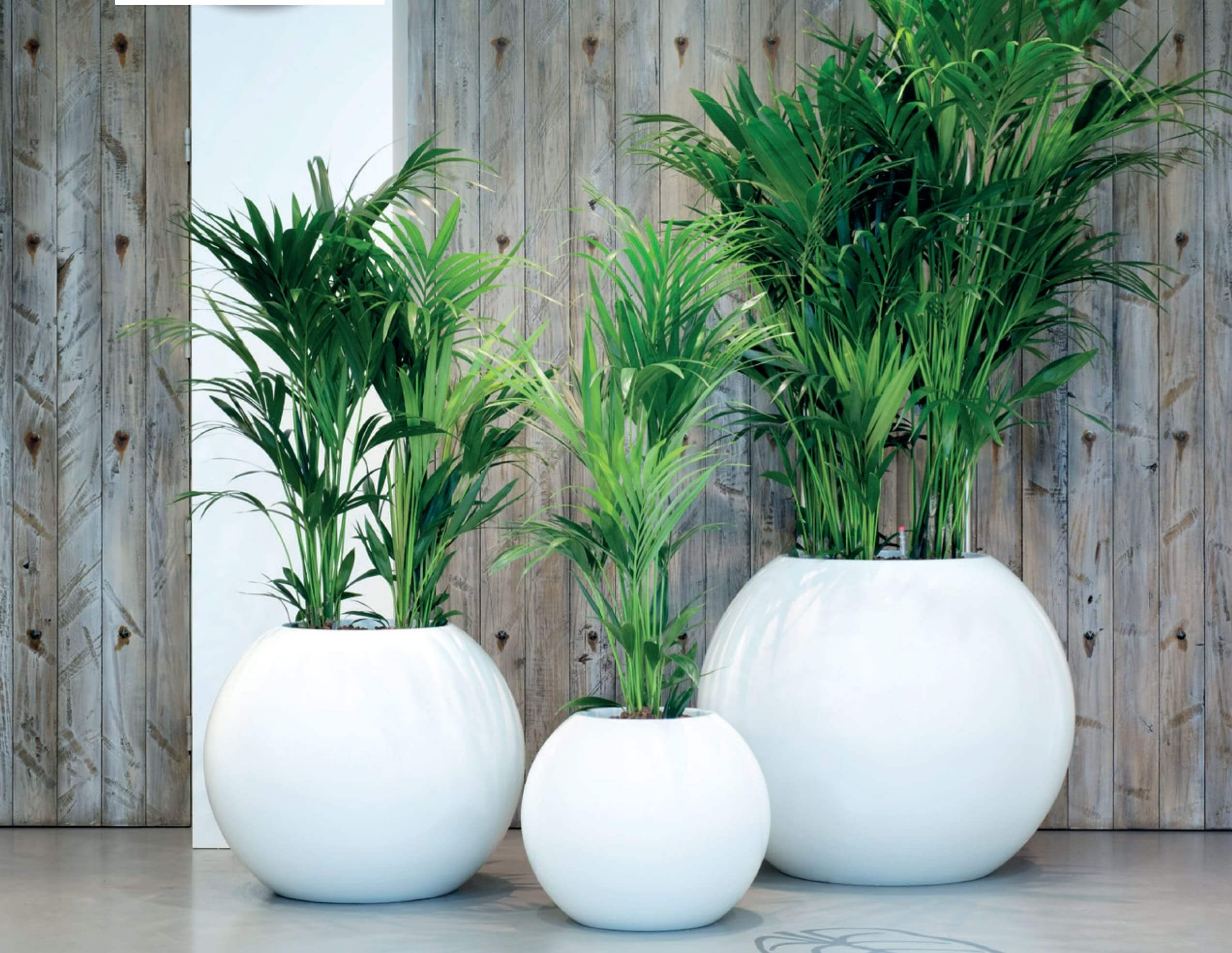 Earth Sphere Planters