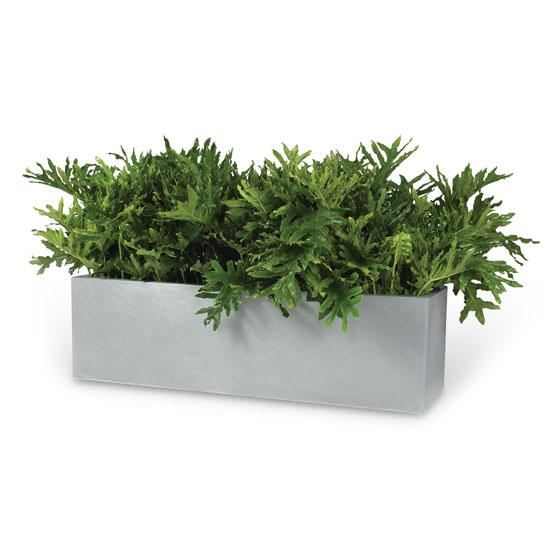 Slim Line Planter