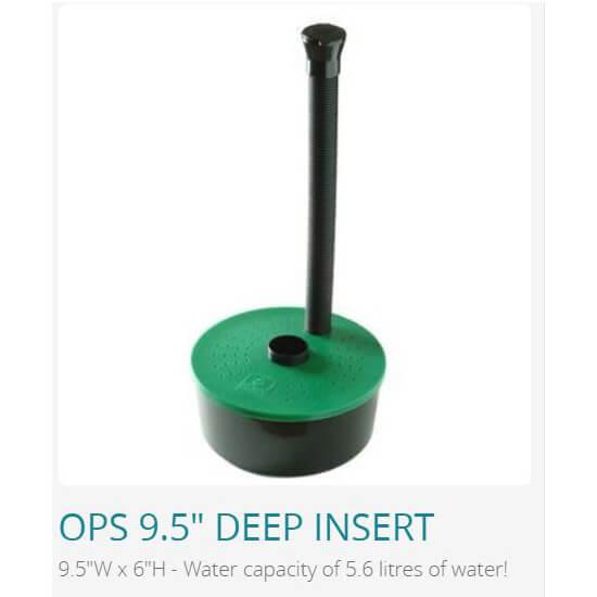 Ollie 9.5 Deep