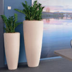 Seaside Bisque Tall Vases